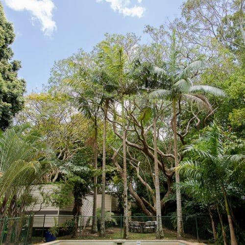 rainforest-holiday-village-7703
