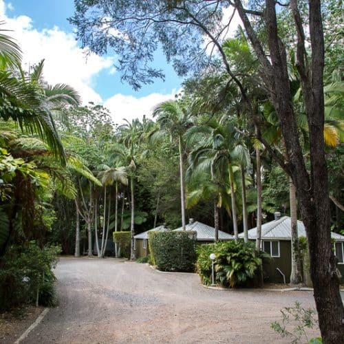 rainforest-holiday-village-7706