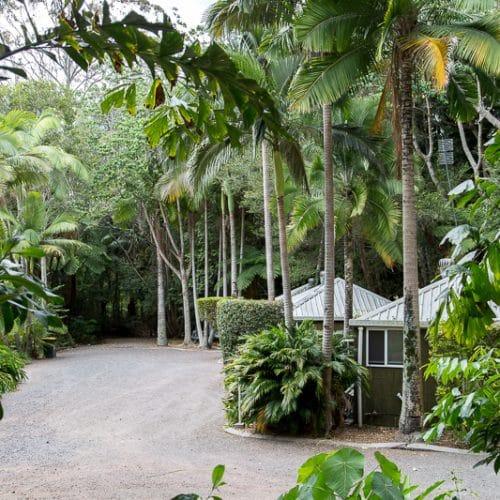 rainforest-holiday-village-7751