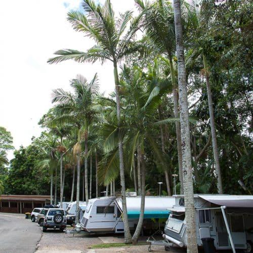 rainforest-holiday-village-7783