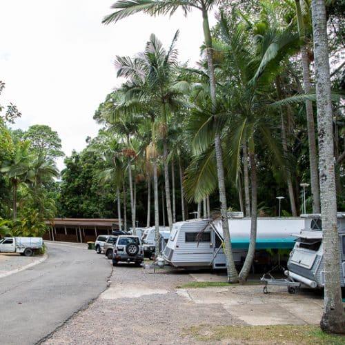 rainforest-holiday-village-7784